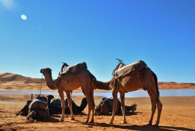 Tours: 3-day private tours in 4x4 vehicles