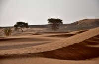 Solidarity tour through Morocco: Mountains and Deserts