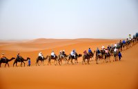 Corporate tours in Morocco