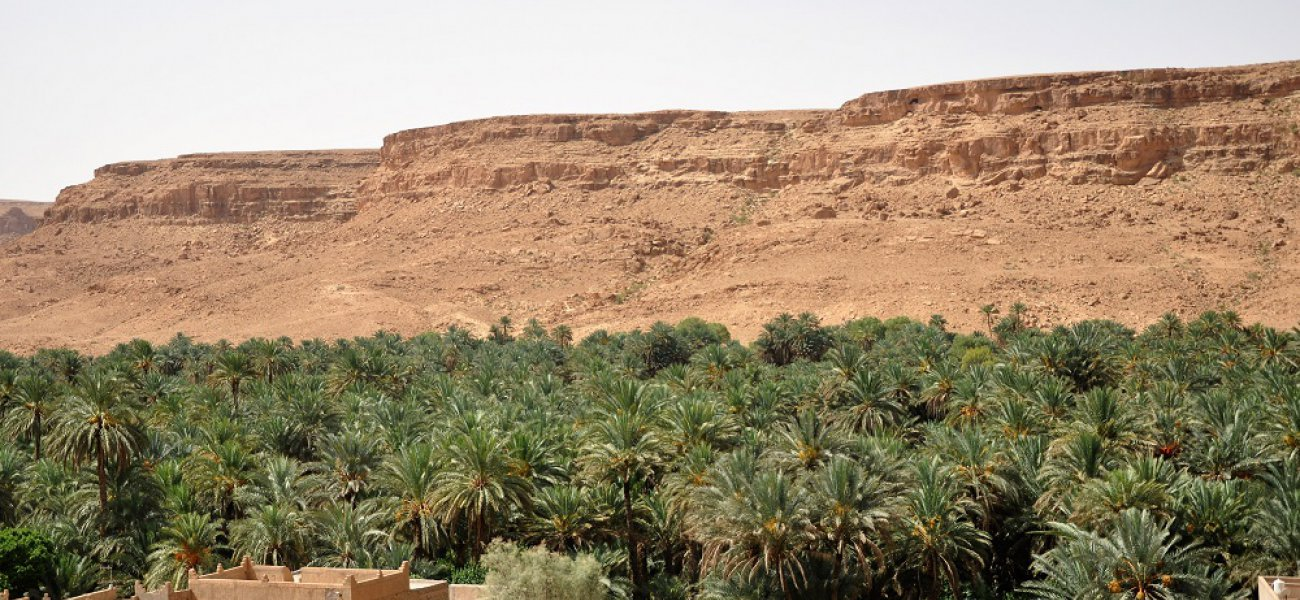 Three day (two night) tour from Ouarzazate to Fez
